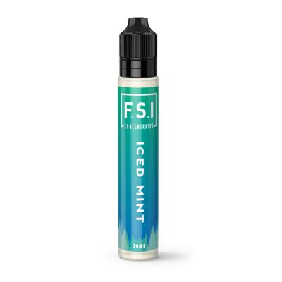 FSI mockup ICED MINT 600X600